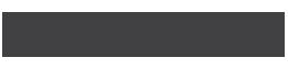 The Web Partner Logo